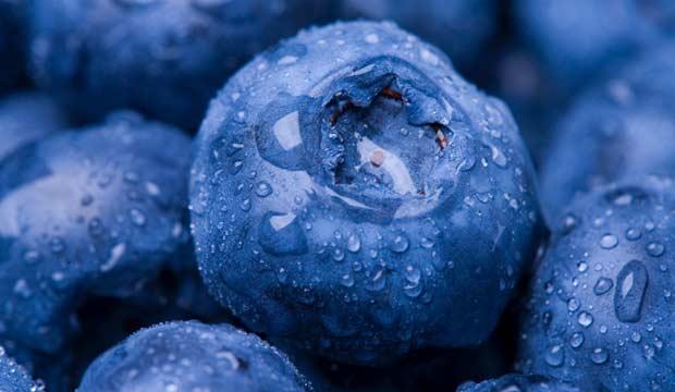 Des aliments pour renforcer son système immunitaire