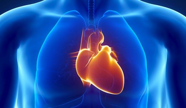 Les troubles du rythme cardiaque (arythmies)
