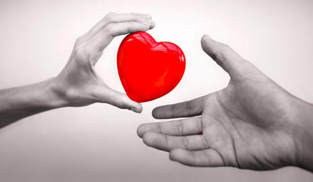 Le consentement au don d'organes et de tissus