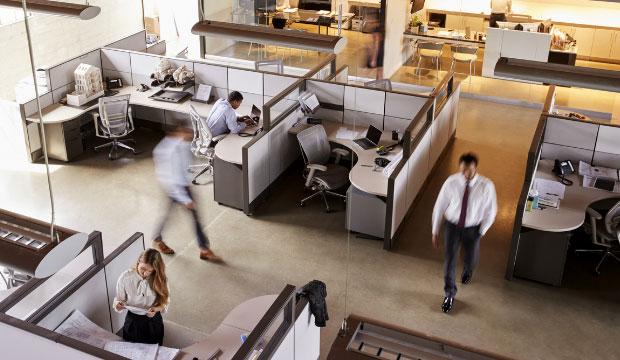 L'ergothérapie au service des entreprises
