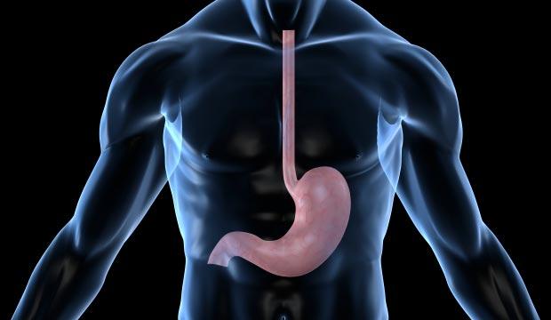 L'acidité gastrique